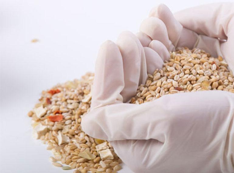 sterilizzazione-cereali-770x570